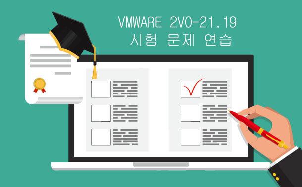 VMware 2V0-21.19 시험 문제 연습