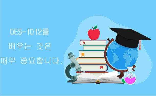 DES-1D12를 배우는 것은 매우 중요합니다.