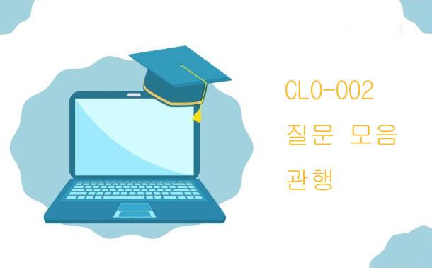 CLO-002질문 모음 관행