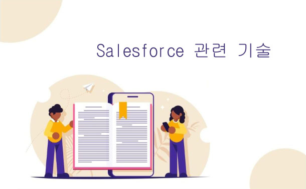 Salesforce 관련 기술