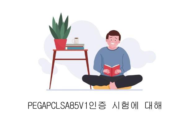 PEGAPCLSA85V1 인증 시험에 대해